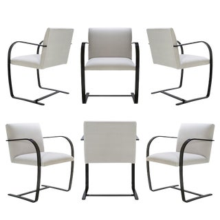 Brno Flat-Bar Chairs in Dove Velvet, Obsidian Gloss Frame - Set of 6