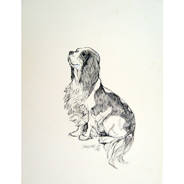 King Charles Spaniel Original Pen & Ink - Image 1 of 1