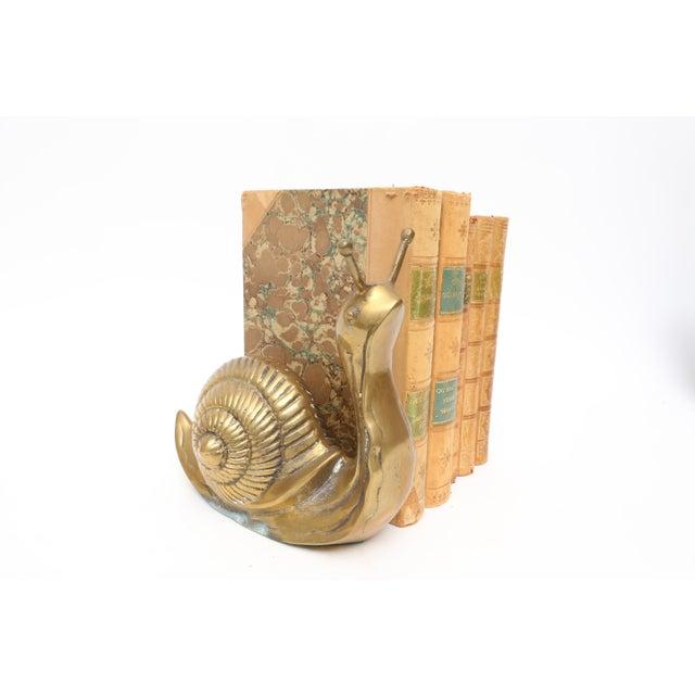 1960s Vintage Oversize Large Brass Snail For Sale - Image 5 of 5
