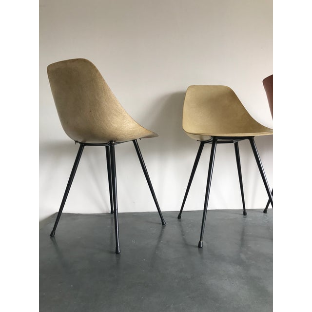 French Mid-Century Modern Yellow & Orange Resin Chairs - Set of 4 For Sale - Image 3 of 4