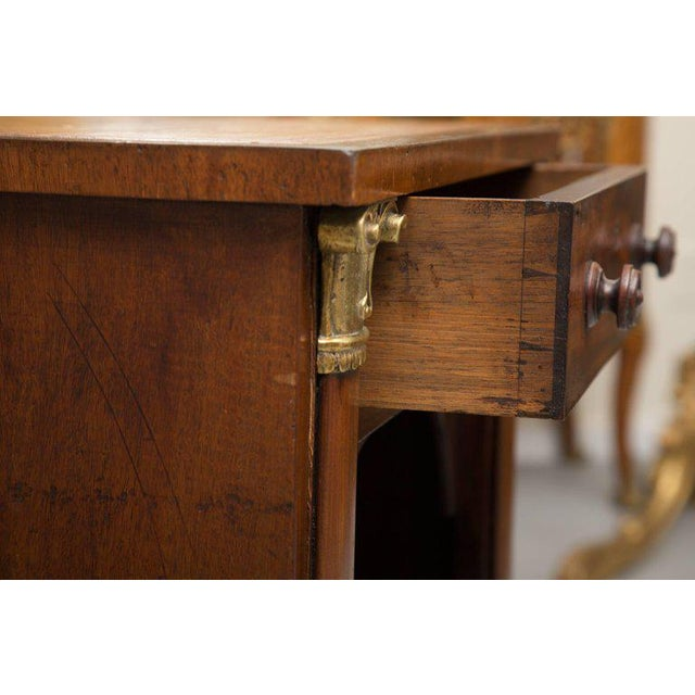 Animal Skin 19th Century Mahogany Knee Hole Desk For Sale - Image 7 of 8