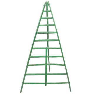 19th Century Fruit Picking Ladder For Sale