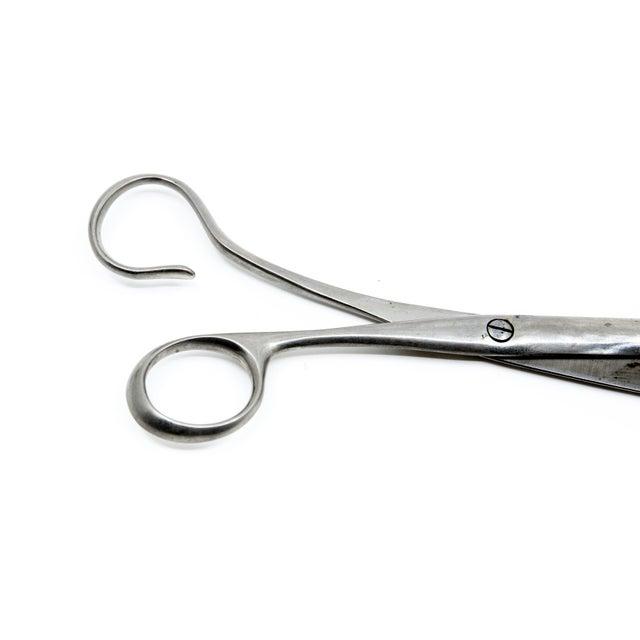 "Antonia Campi Midcentury ""Neto"" Scissors For Sale In New York - Image 6 of 7"