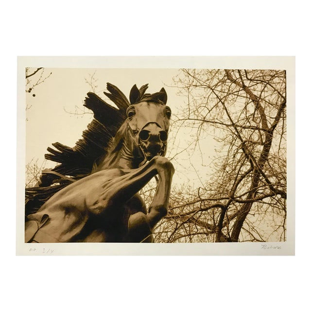 Central Park NYC Horse Print For Sale