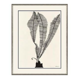 Scissor Fern Art Print For Sale