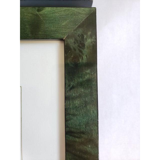 Decorative Butterfly Botanical Framed Prints-Set of 3 For Sale - Image 9 of 12