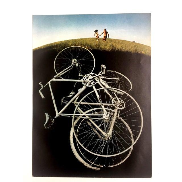 1970s Grassy Romp Print by Sam Haskins - Image 1 of 3