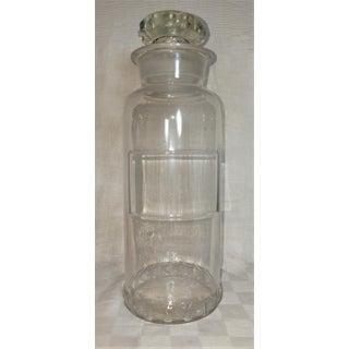 Apothecary Jar, Circa 1891 Preview