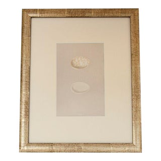 Late 19th C. Vintage Morris English Egg lithograph For Sale