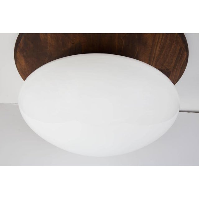 1971 Sergio Mazza 'Magnolia' Ceiling Lamp for Quattrifolio For Sale In Los Angeles - Image 6 of 7