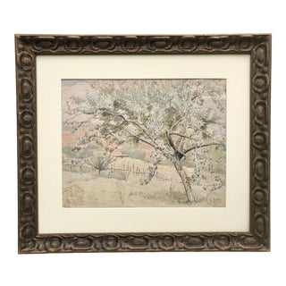 Vintage Original Watercolor Landscape With Tree by Franklin White For Sale
