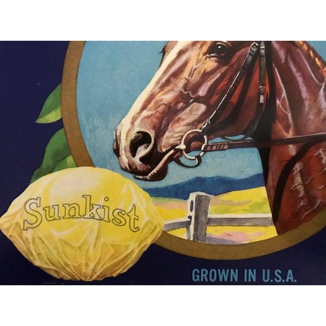 1930s Vintage Sunkist Lemons Horse Fruit Crate Label For Sale - Image 4 of 5