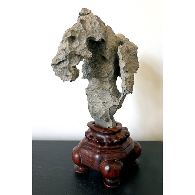Small Chinese Scholar Stone Yingde on Display Stand For Sale In Atlanta - Image 6 of 13