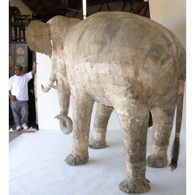 Life Size Papier Mache Elephant For Sale - Image 4 of 9