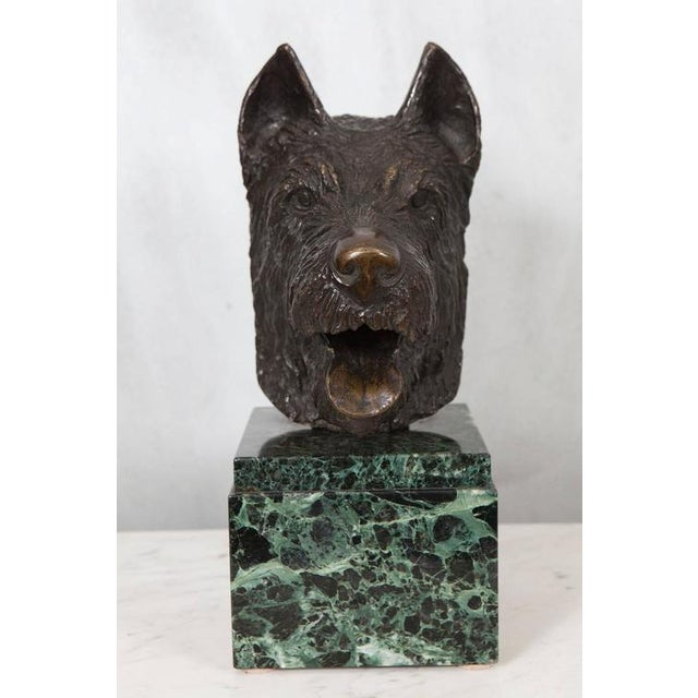 French Bronze Bust of Dog on Marble Base For Sale - Image 5 of 5