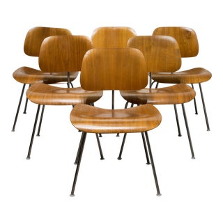 Set of Early Ray & Charles Eames for Herman Miller Dcm Chairs C.1950s For Sale