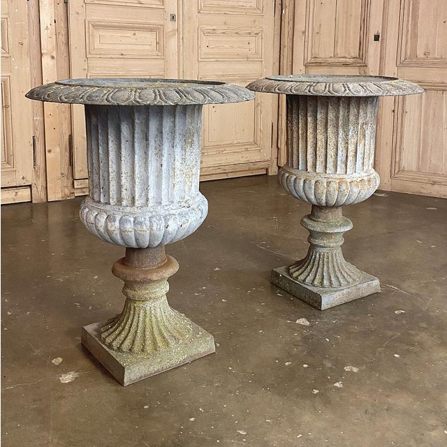 Neoclassical Pair Large 19th Century Cast Iron Jardinieres ~ Garden Vases For Sale - Image 3 of 12