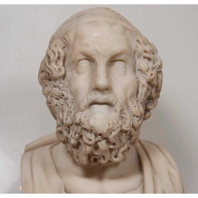 Stone Marble Bust of Homer For Sale - Image 7 of 11