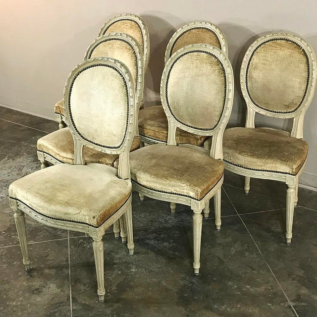 Set of 6 Antique Painted Louis XVI Chairs feature a well-cushioned design upholstered in mohair, with contoured oval...