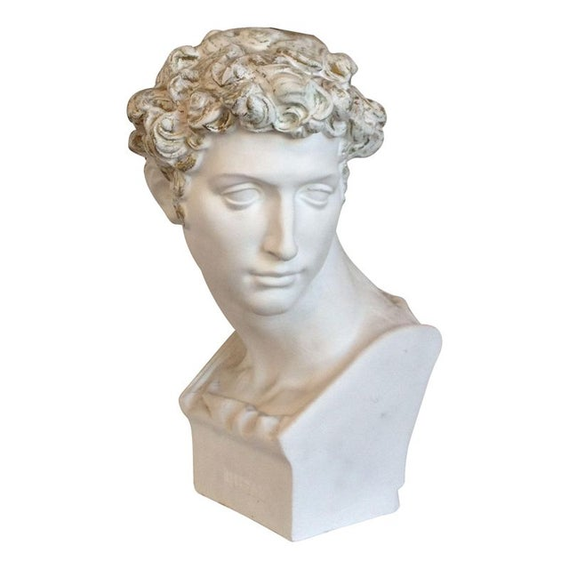 Plaster Bust Of David - Image 1 of 8
