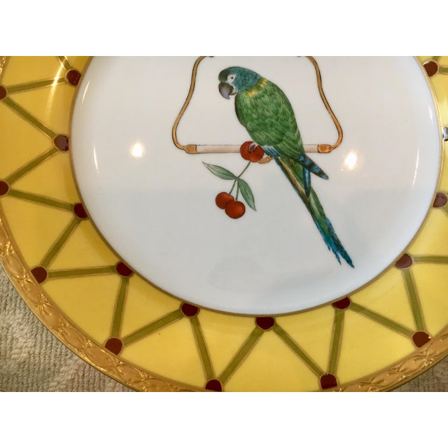 Ceramic Chelsea House Decorative Tropical Bird Parrot Plates - Set of 8 For Sale - Image 7 of 10