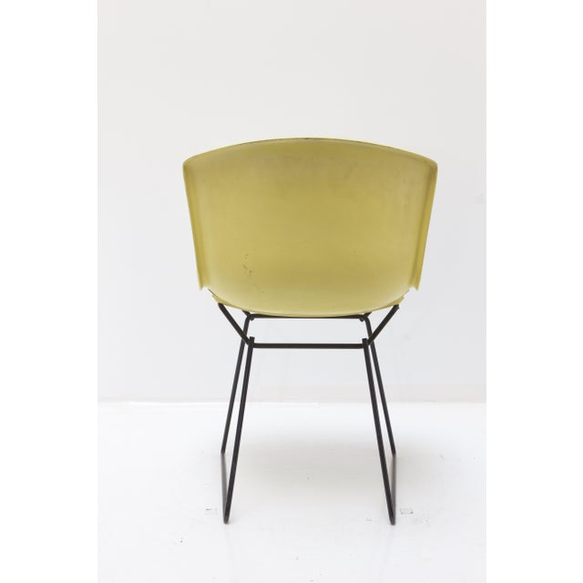 Knoll Knoll Bertoia Fiberglass Side Chair Yellow For Sale - Image 4 of 11