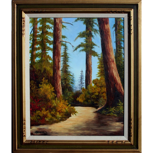"""California Redwoods Trail"" Oil Painting For Sale"