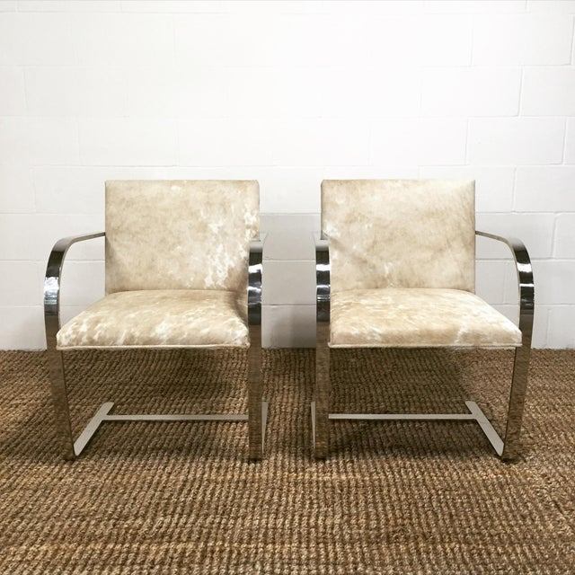 Mies Van Der Rohe for Knoll Brno Chairs - Pair - Image 4 of 5
