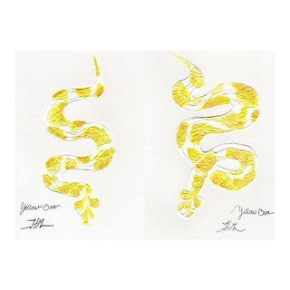 Yellow Boa Original Paintings - A Pair For Sale