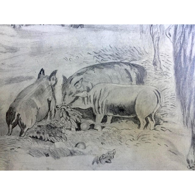Mid 19th Century Antique Horses & Barn Yard Animals Original Drawing For Sale - Image 5 of 5