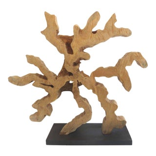 Brazilian Amazon Reclaimed Guaranta Wood Mounted Sculpture by Valéria Totti For Sale