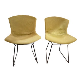 Vintage Mid Century Modern Pair of Harry Bertoia for Knoll Shell Chairs Newly Upholstered For Sale