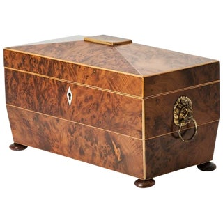 Mid-19th Century Yew Wood Tea Caddy Box From England For Sale