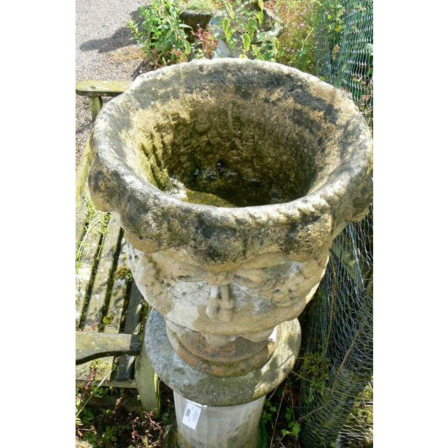 Stone 18th Century Hand Carved Cotswold Stone Planters - a Pair For Sale - Image 7 of 10
