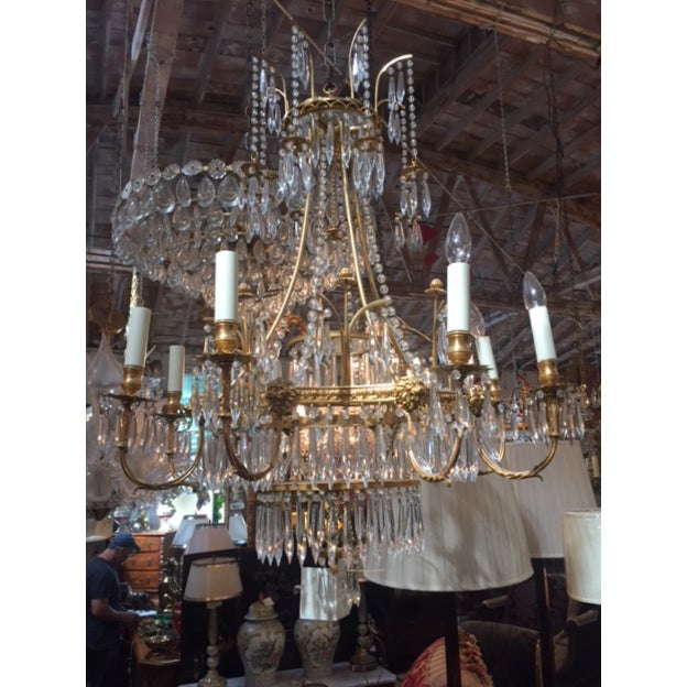 1950s Vintage Neo-Classic Brass Dore Chandalier For Sale - Image 13 of 13