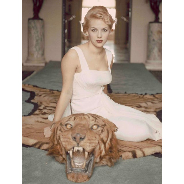 Metal Slim Aarons -Beautiful Lady Daphne Cameron on a Tiger Skin Rug - 1959 Photograph For Sale - Image 7 of 7