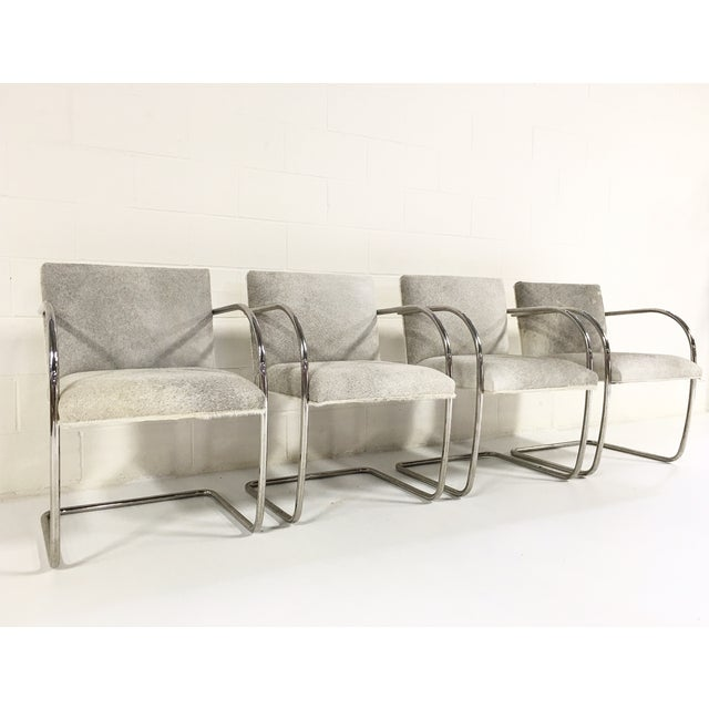 Brno Style Cowhide Chairs - Set of 4 - Image 3 of 7