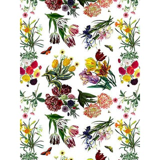 Nicolette Mayer for Scalamandre Flora & Fauna, White Wallpaper For Sale