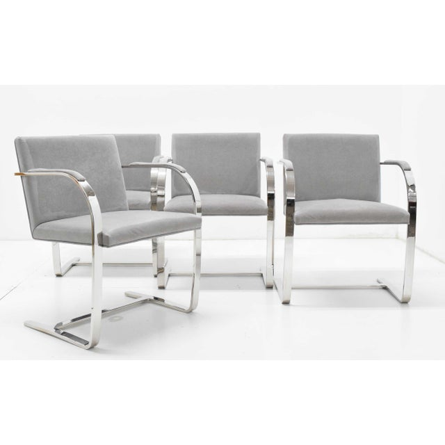Mies Van Der Rohe Gray Suede Brno Chairs - Set of 4 For Sale In Dallas - Image 6 of 9