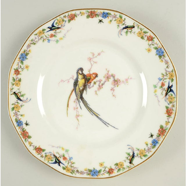 Vintage Mixed Bird Dinner Plates - Set of 8 For Sale - Image 4 of 10