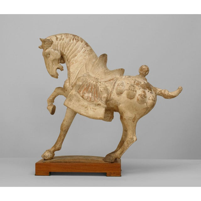 Asian Chinese Tang Dynasty Unglazed Clay Prancing Horse For Sale - Image 9 of 9