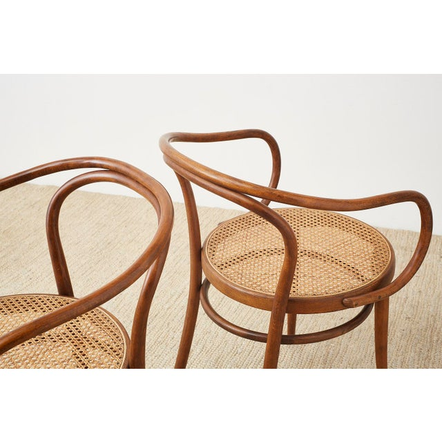 Mid 20th Century Thonet 209 Bentwood Cane Armchairs - Set of 8 For Sale - Image 5 of 13