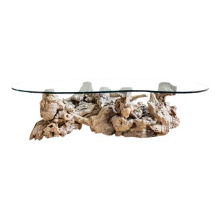 Driftwood and Glass Coffee Table | Mid Century | Free Form Burlwood For Sale