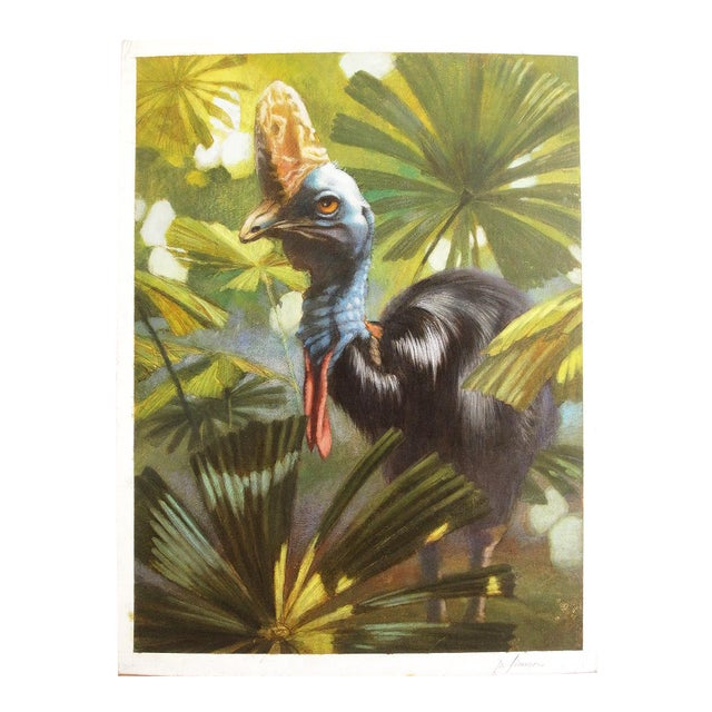"Ute Simon ""Cassowary"" Jungle Bird Painting - Image 1 of 6"