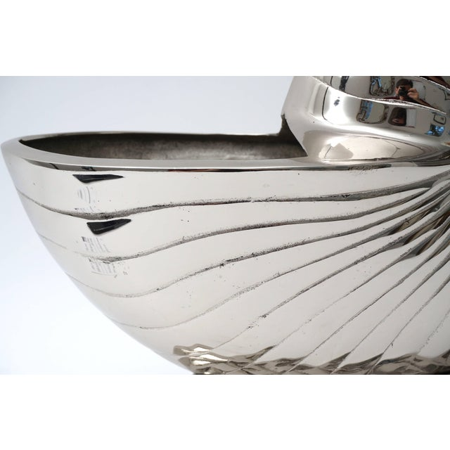 Metal Large Nickel Plated Nautilus Cachepot For Sale - Image 7 of 10