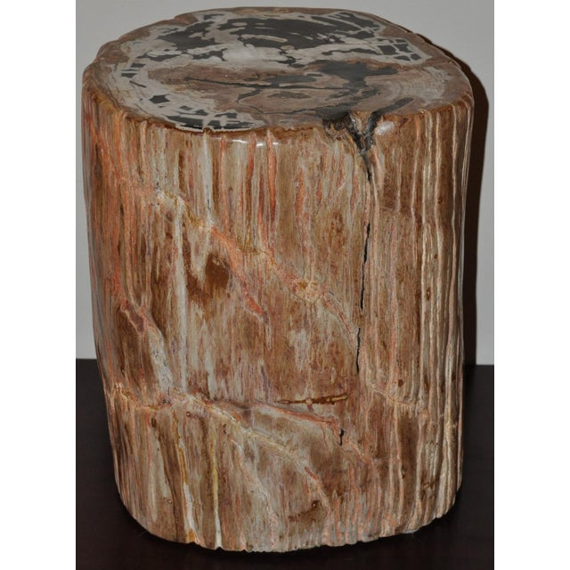 Extraordinary designer quality petrified wood side table. Highly polished with beautiful natural markings left behind by...