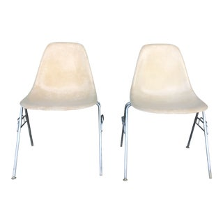 Mid Century Modern Fiberglass Shell Chair by Herman Miller- A Pair For Sale