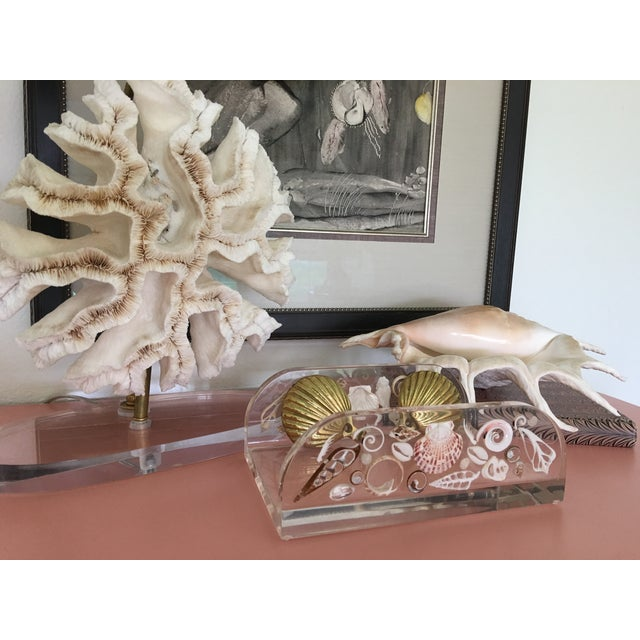 Gold Natural Coral Lamps - Pair For Sale - Image 8 of 9