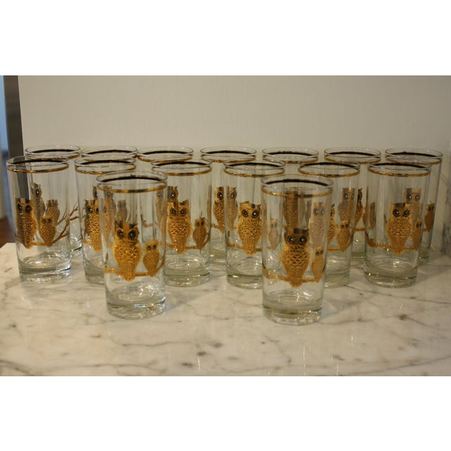 024a9945128 Boho Chic Mid-Century Culver Ltd. Gold Owl Glasses - Set of 15 For