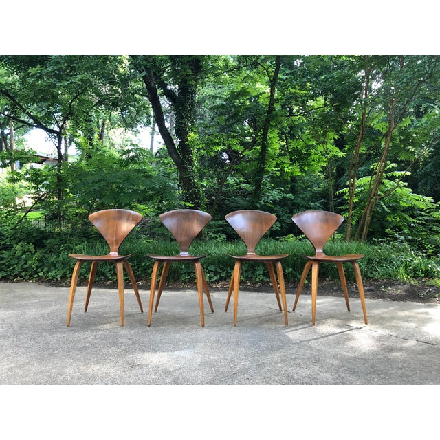 Norman Cherner for Plycraft Chairs - Set of 4 For Sale In Dallas - Image 6 of 13